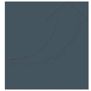 Rrsc icon growth chart darkblue
